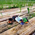 Un braccialetto e una bomboniera solidale per l'ambiente